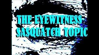 Lost Bigfoot Cave Entry Footage Found  The Eyewitness Sasquatch topic #8