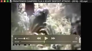 Freightened!! Campers Film a Scary Bigfoot Attack!! 2016 Breakdown