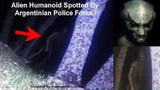 Alien Spotted By  Argentinian Police Force?