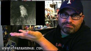 "NTParanormal: After Dark Pocast (Ep14)""Sasquatch!"""