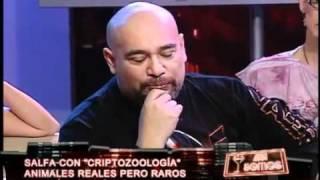 Salfate y la criptozoología -video oficial