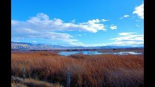 Stillwater Nevada - Wildlife Refuge and Ancient Salt Marsh Adventure