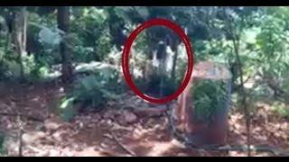 Youtube's Most Haunted EVER (ghost videos) GHOST CAUGHT VIDEO TAPE  haunting in WOODS Scary Videos