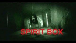 Haunted Insane Asylum | Spirit Box | Ovilus