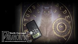 LIVE | CONTACTING ZOZO | OUIJA DEMON | 100% REAL | HAUNTED DOLL