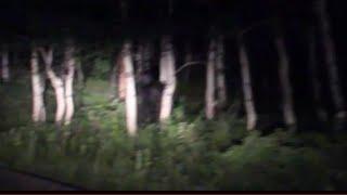 Bigfoot Sighting near Sundance Utah Breakdown