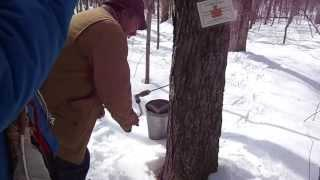 Paranormal AfterParty Maple Tree Sponsorship 2014 Sugarbush Part 6