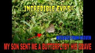 """HE SENT ME A BUTTERFLY """"IT LANDED BY MY FEET""""...INCREDIBLE EVP'S!!"""