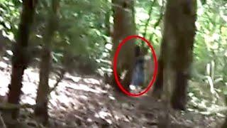 Huge Ghost Standing Behind A Tree Caught On Camera!!!