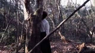 Japan's Suicide Forest - Most Shocking Suicides Ever