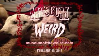 Museum of the Weird-The Electric Man-Austin, TX-2017(captioned)