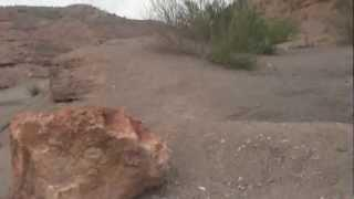 "Nelsons Landing Expedition - Part 8 ""Jewels Of The Desert"""
