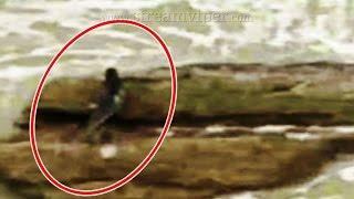 5 Sirenas Reales Captado en Video y Visto en la Vida Real